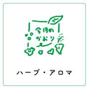 北海道エゾウコギ